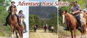 ADVENTURE HORSE SAFARIS